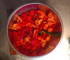 Chile Peppers Cut