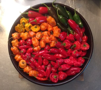 Chile Peppers Raw